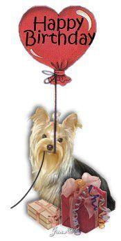 Happy Birthday Happy Birthday Dog Happy Birthday Flower Funny Happy Birthday Song