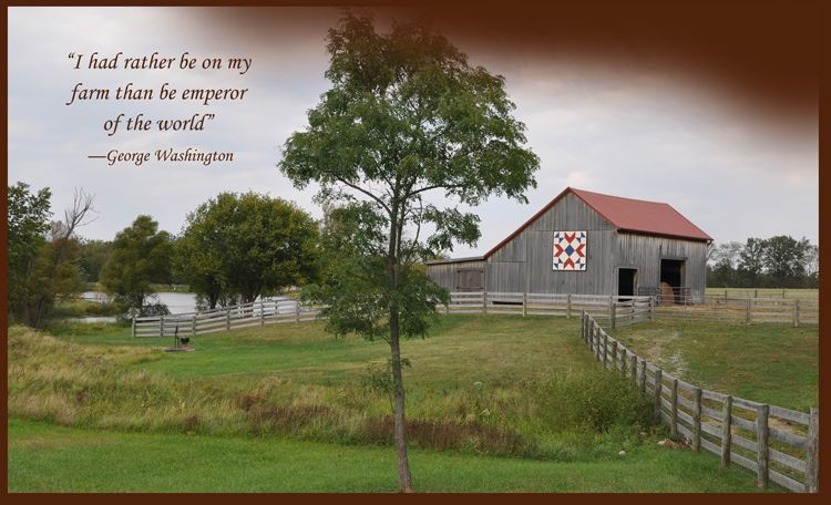 I Seriously Want To Have My Wedding Here The Dixon Family Farm Located In Xenia Ohio Ohio Wedding Venues Family Farm Rural Wedding