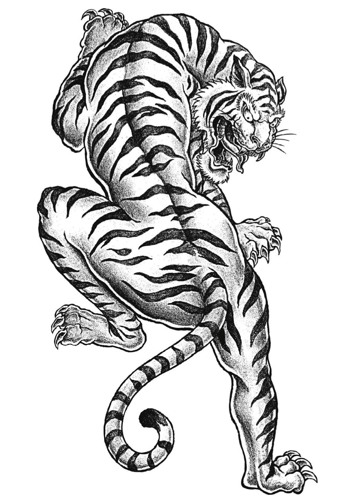 Free Tiger Coloring Page To Print Adult Pages