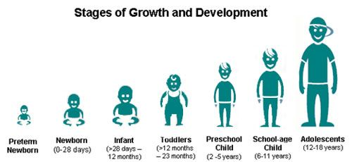 Stages of Development each stage is a unique opportunity for parents and educators to make a positive impact on their development
