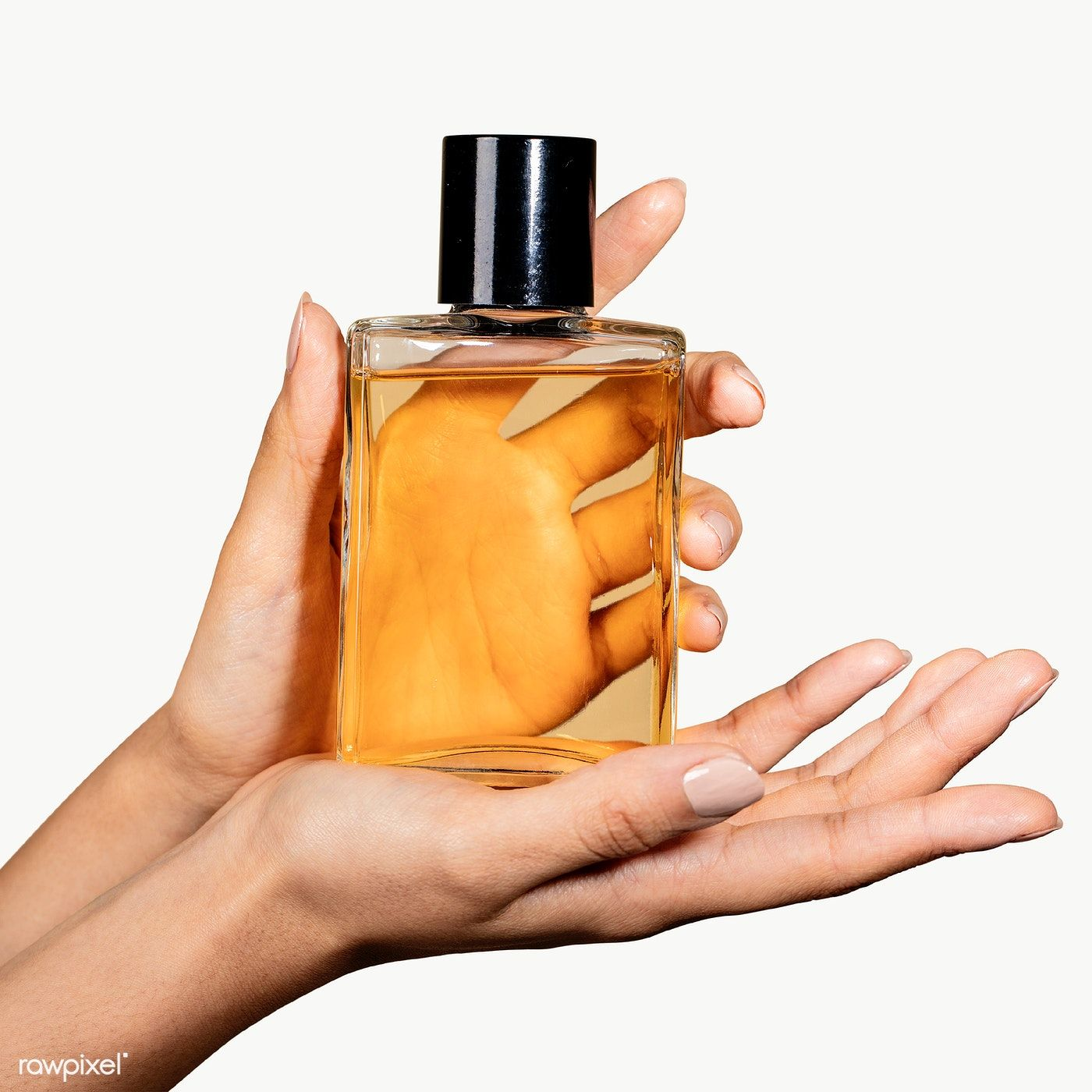Woman Holding A Perfume Glass Bottle Transparent Png Premium Image By Rawpixel Com Mckinsey Perfume Fragrance Bottle Small Perfume Bottles