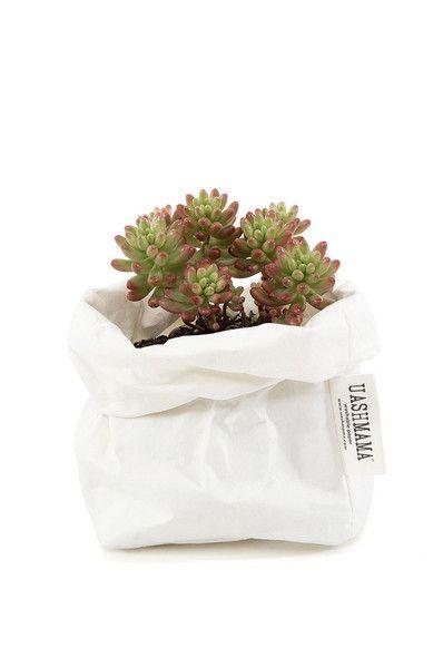 Uashmama Paper Bag White Perfect For Plants Just Place Pot