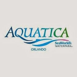 Seaworld Aquatica Orlando Review A Family Friendly Experience Raising Whasians Sea World San Antonio Sea World Water Park