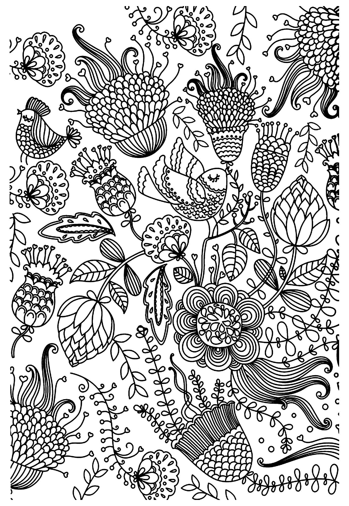 Free coloring page coloring antistress birds