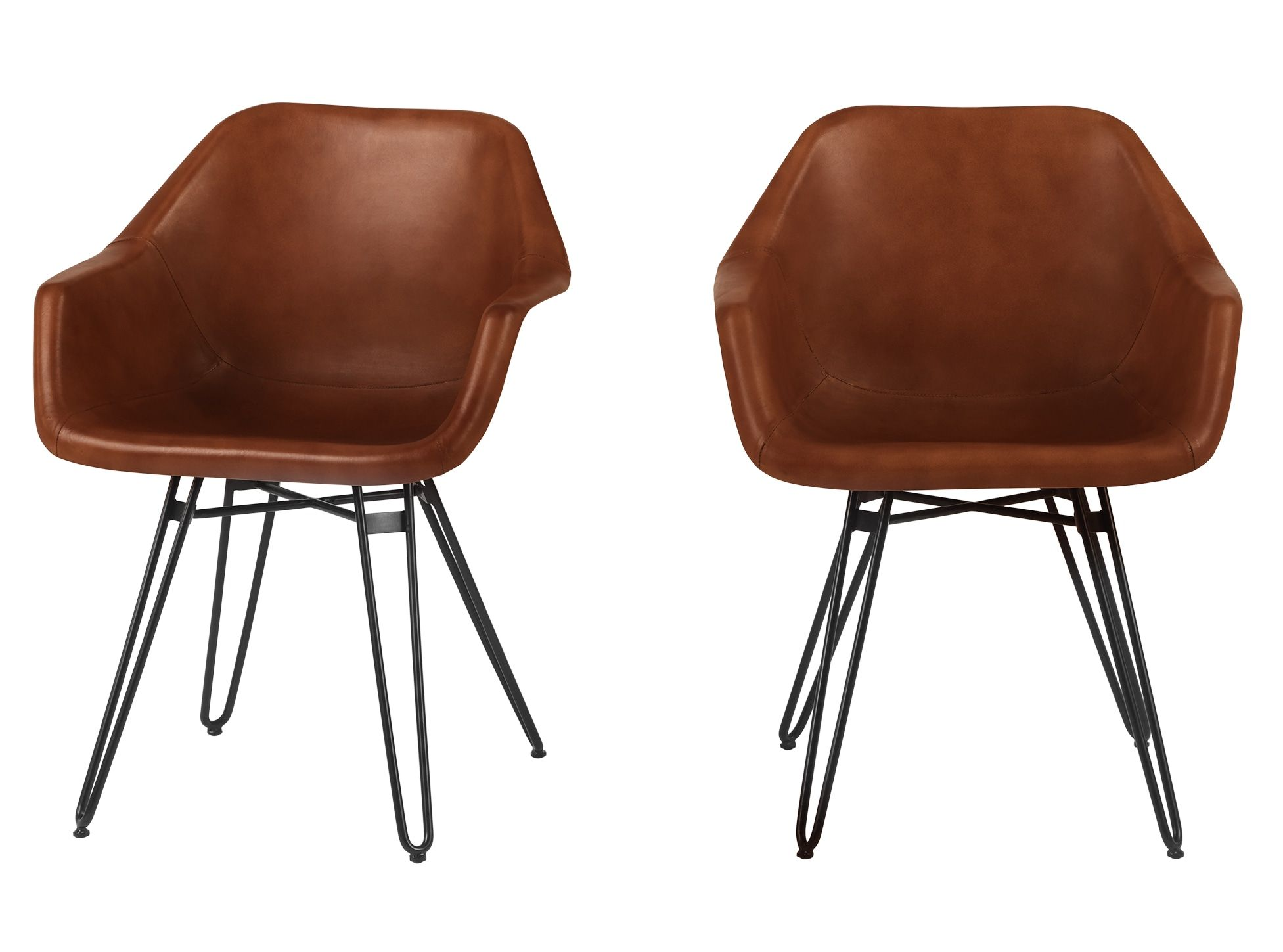 Set of 2 Hektor Tub Dining Chair, Tan and Black | Dining ...