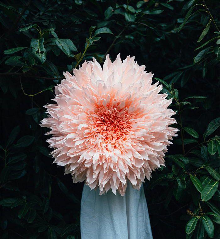 Огромнейшие цветочные скульптуры из бумаги