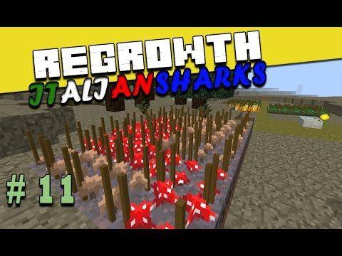 Regrowth ITA Minecraft Ep 11 - Come craftare funghi - #minecraftita