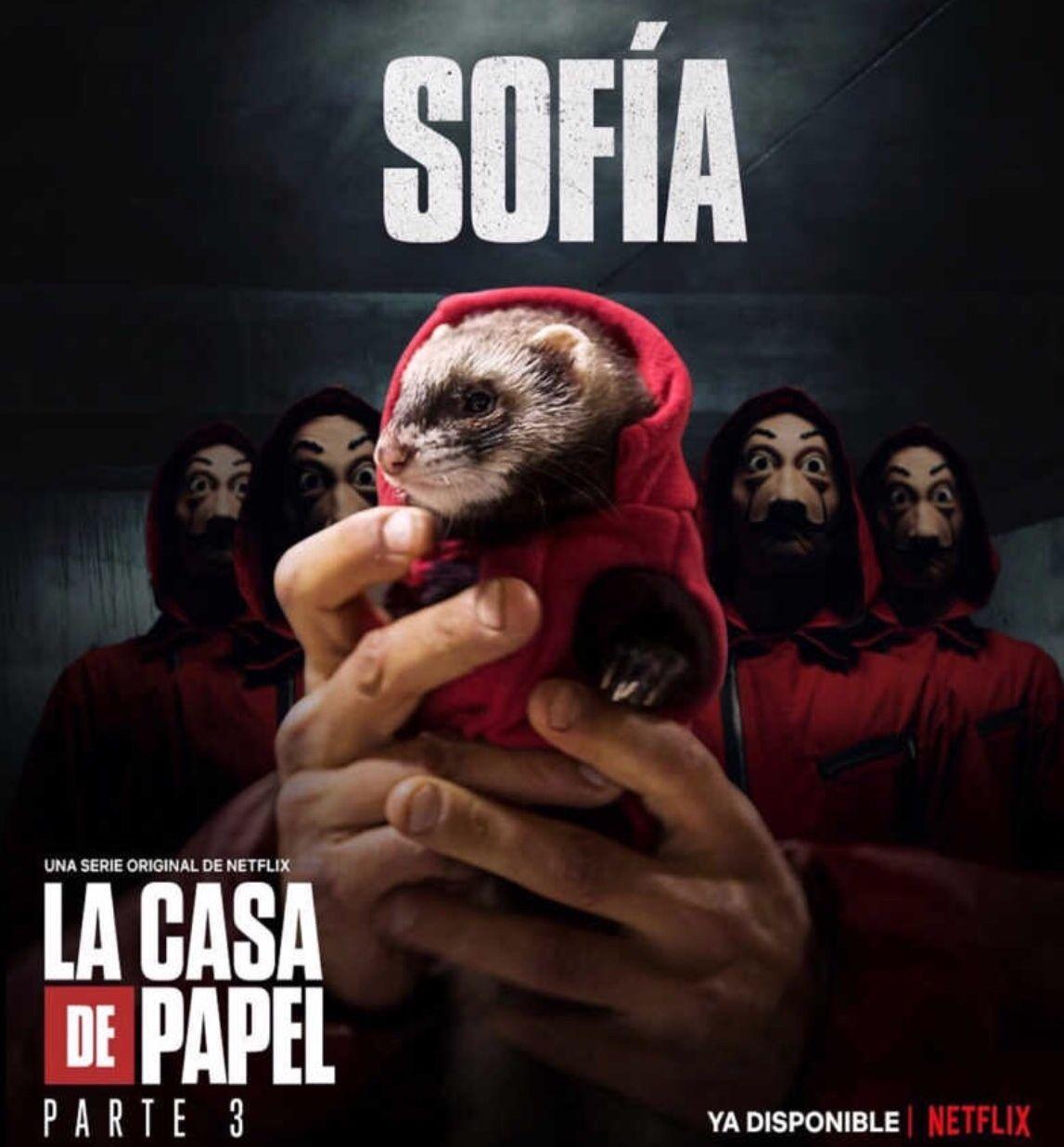 Sofia La Casa De Papel Las Casas De Papel Casa De Papel Sobres De Papel