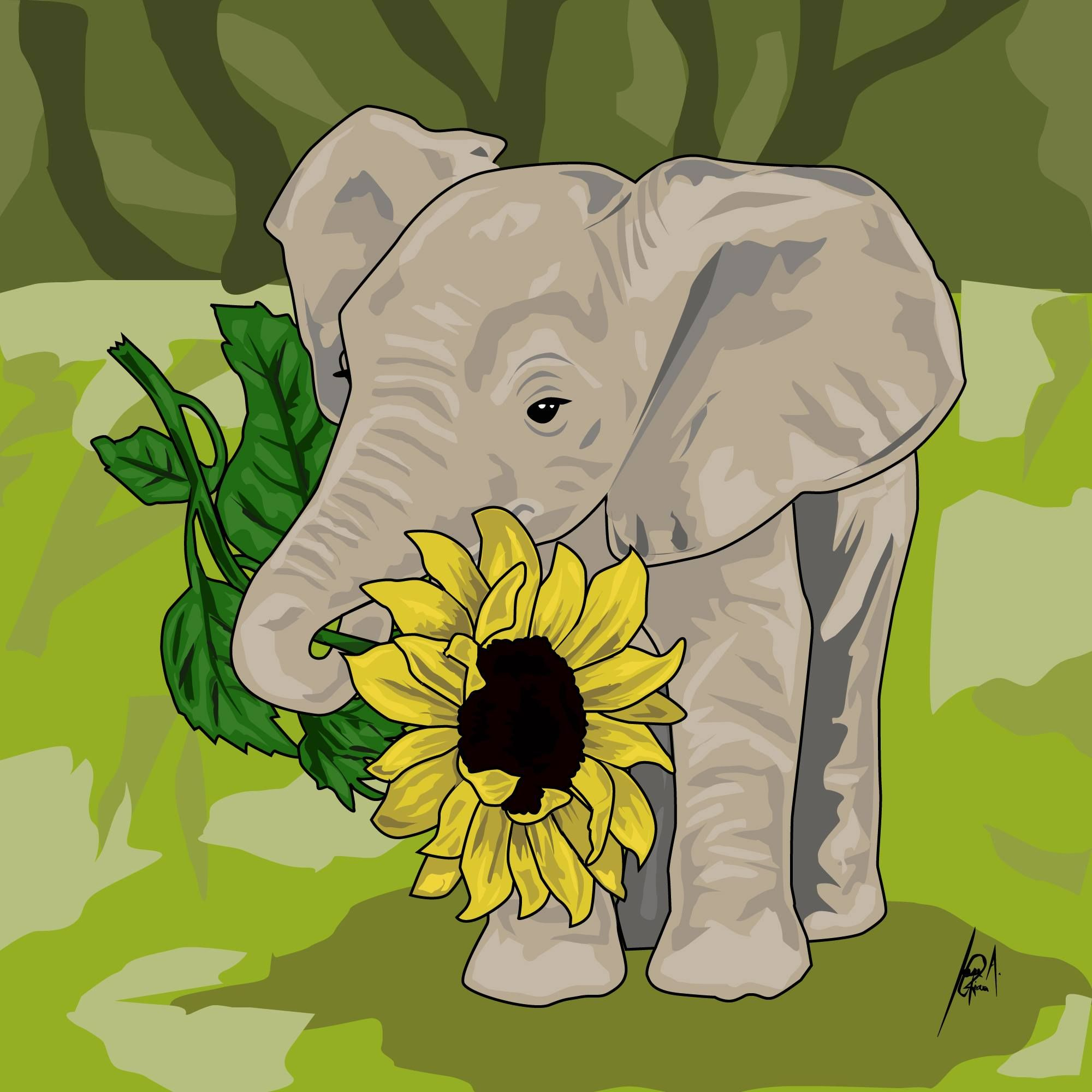 Elephant And Sunflower Google Search