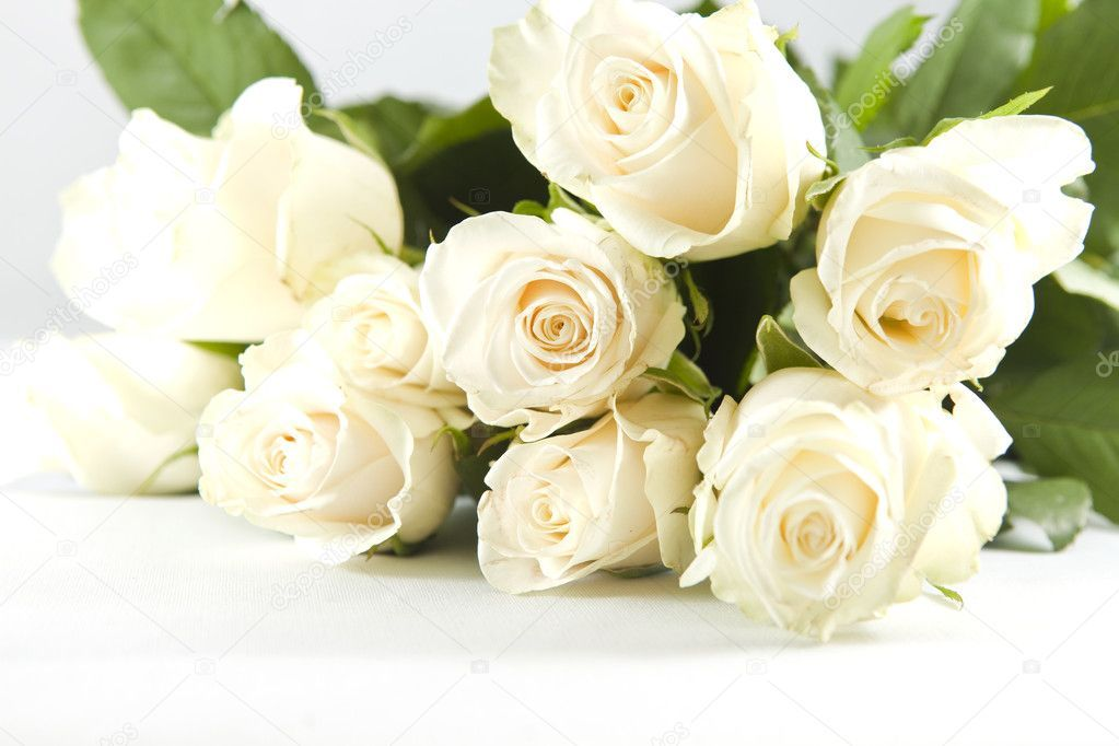 Beautiful Bunch Of White Rose On The White Background Affiliate