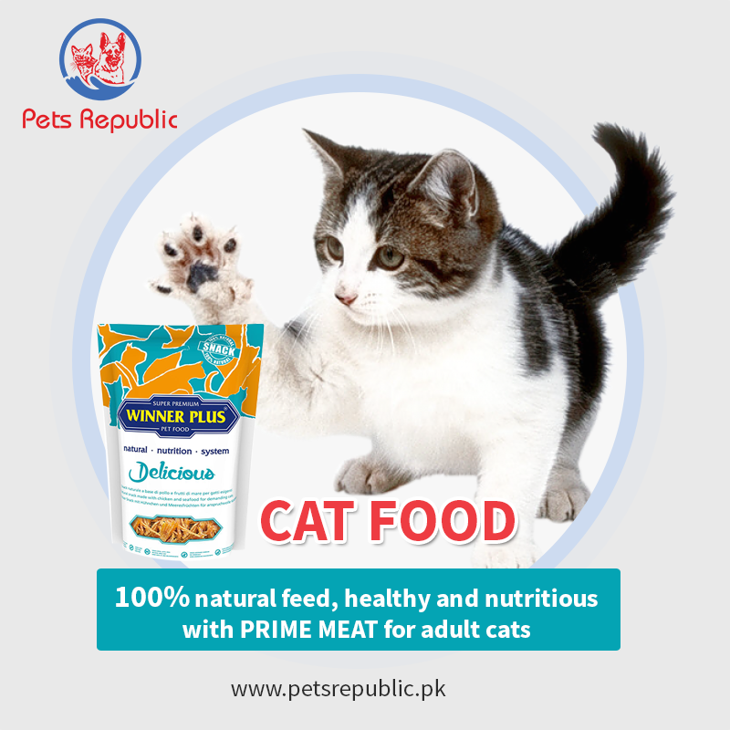 Cat Food In 2020 Cat Food Cats Natural Nutrition