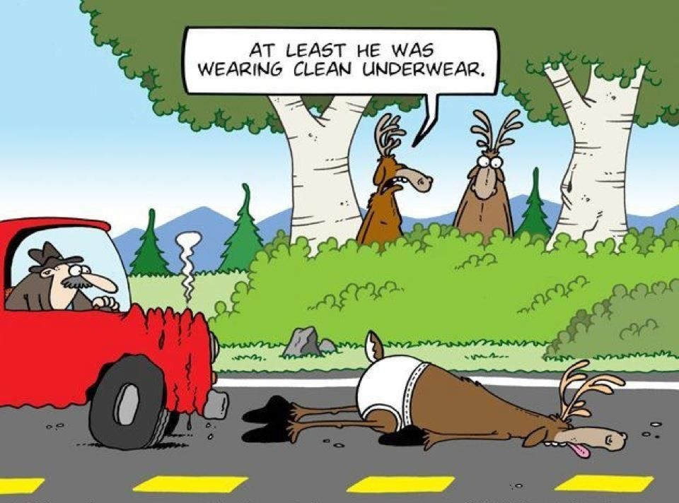 Hunting Humor, Best Funny Pictures