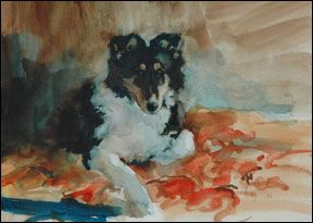 Rainshade Collies | Internationally Renowned Rough Collie Breeder | Coliie Art For Sale