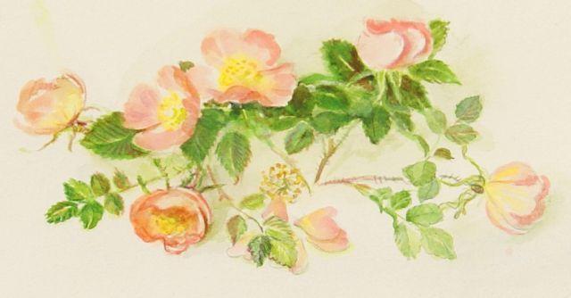 Tasha Tudor - roses