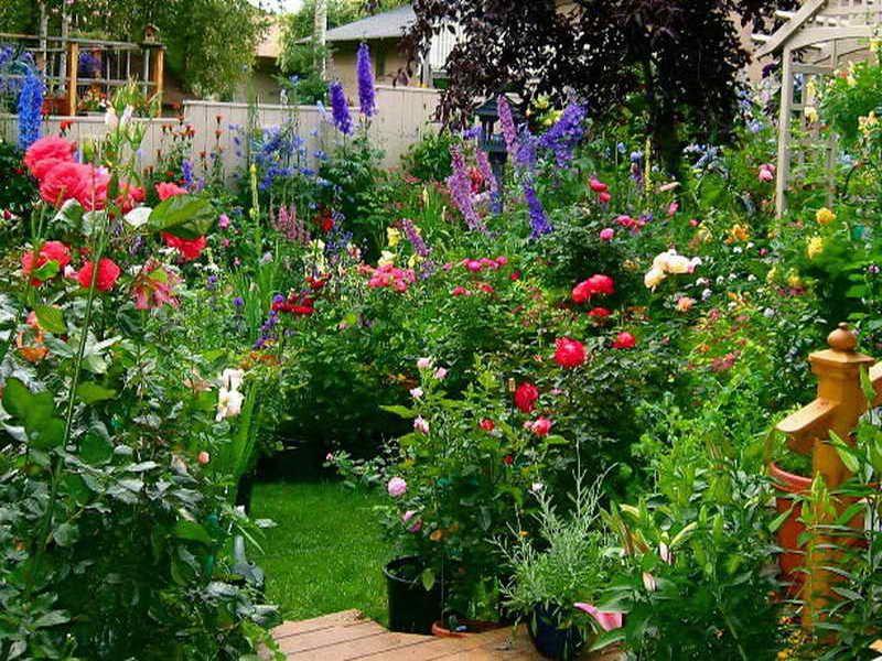 Cottage Flower Garden Ideas DESIGN and FLAIR Pinterest