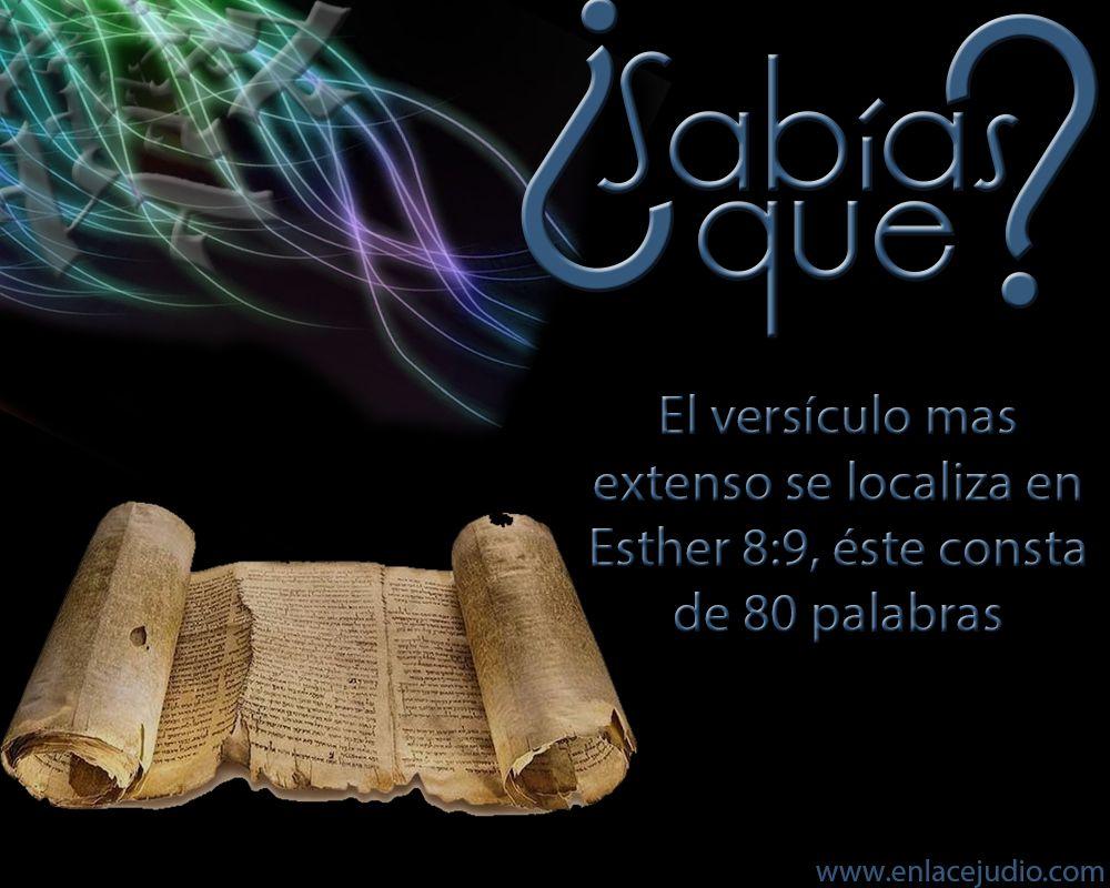 #SabiasQue el versículo más extenso se encuentra en #Esther 8:9 y cuenta con 80 palabras. #Judaismo