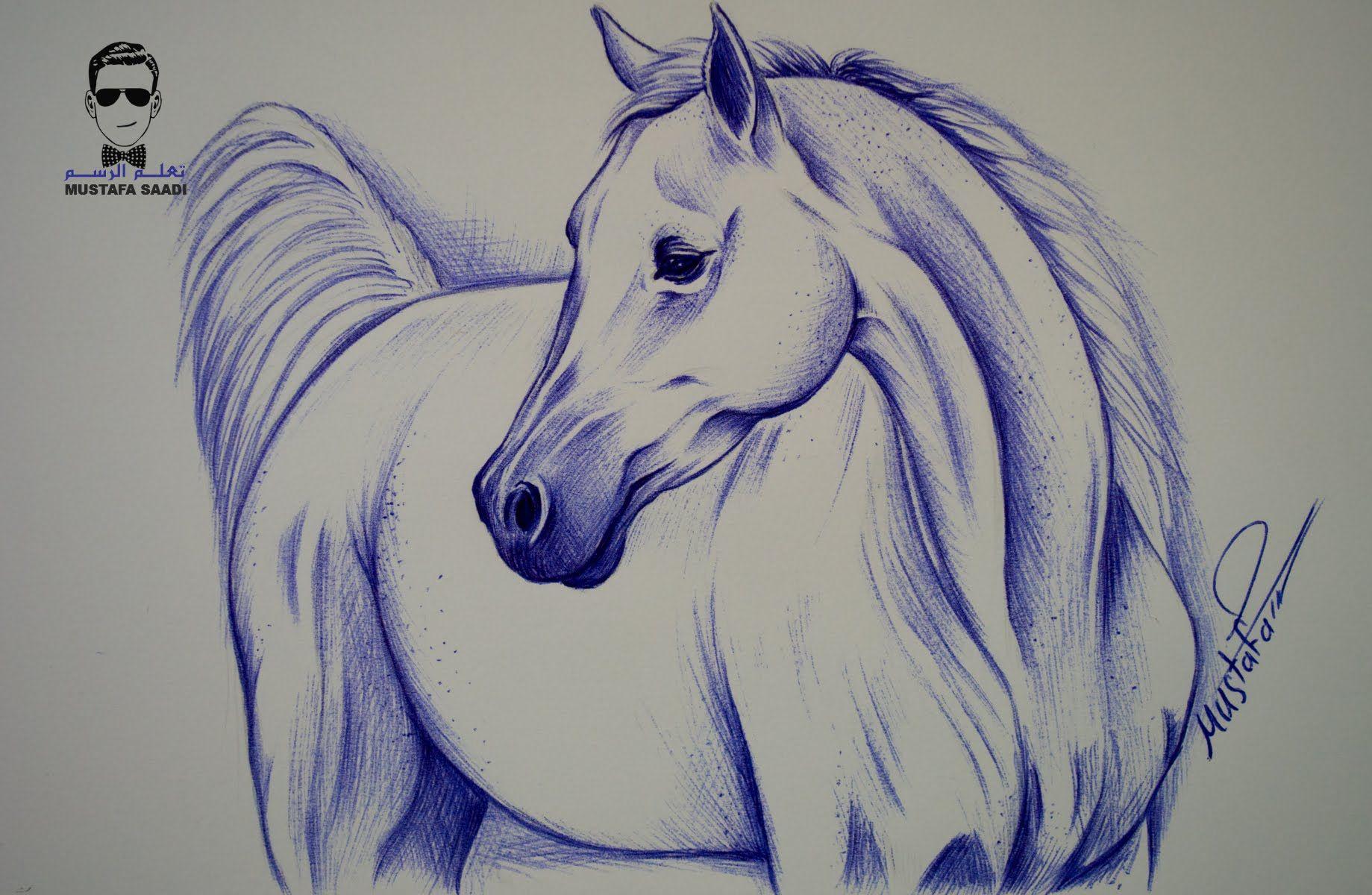 تعلم كيفية رسم حصان بالقلم الجاف الحبر مع الخطوات للمبتدئين Vinyl Art Paint Animal Drawings Drawings