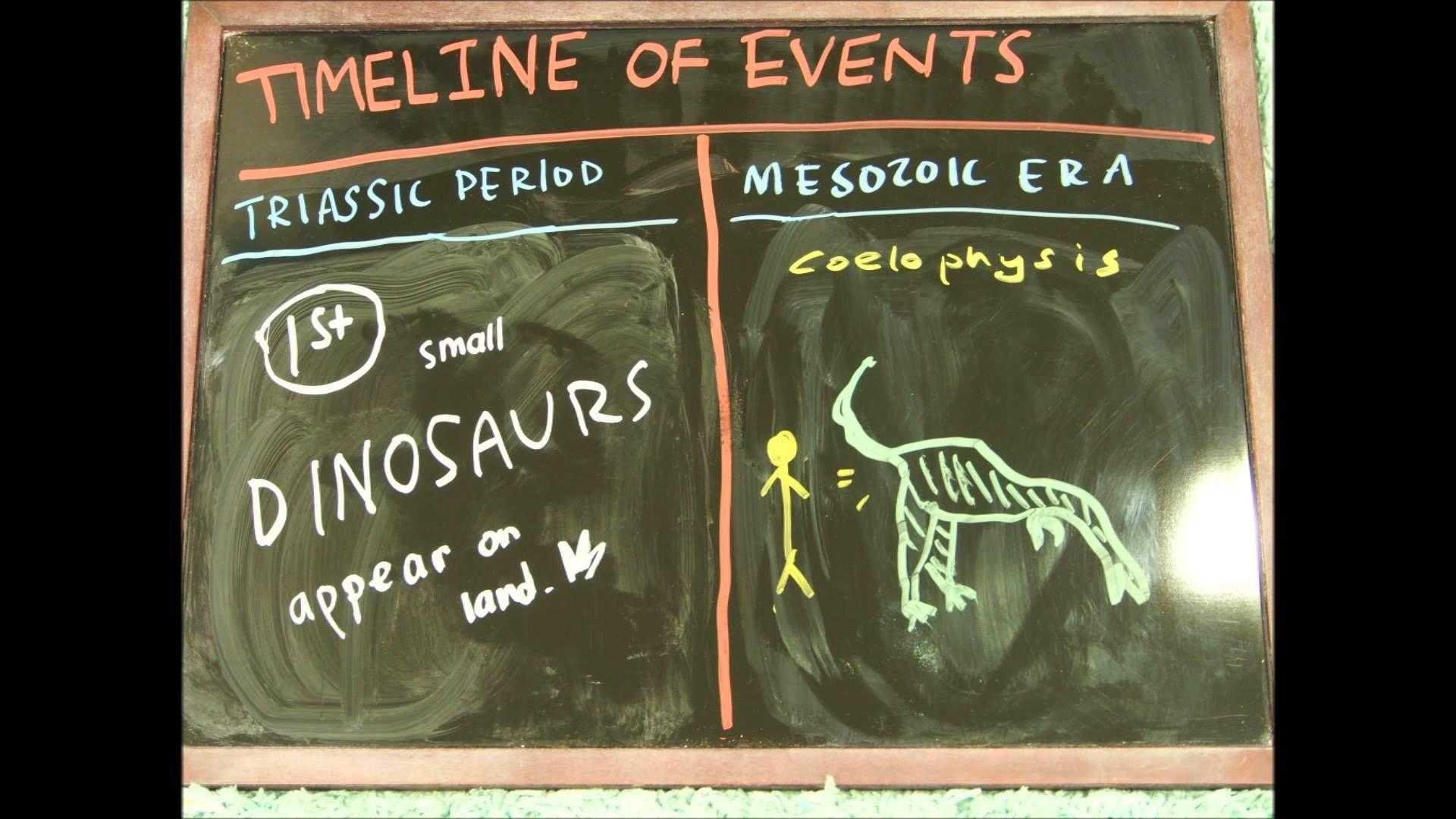 The Evolution Of Life On Earth Part 4 Phanerozoic Eon