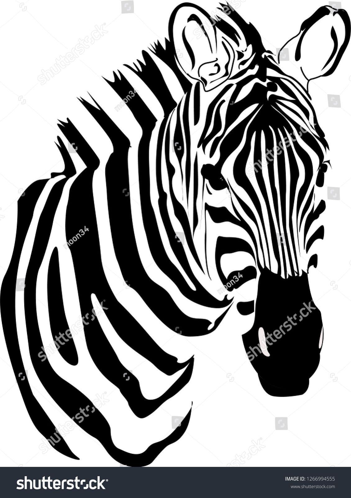 Zebra Vector Animal Ad Ad Zebra Vector Animal In 2020 Zebra Animals Vector