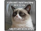 Details about Funny Grumpy Cat Sarcastic Refrigerator  Tool Box  File Cabinet Magnet