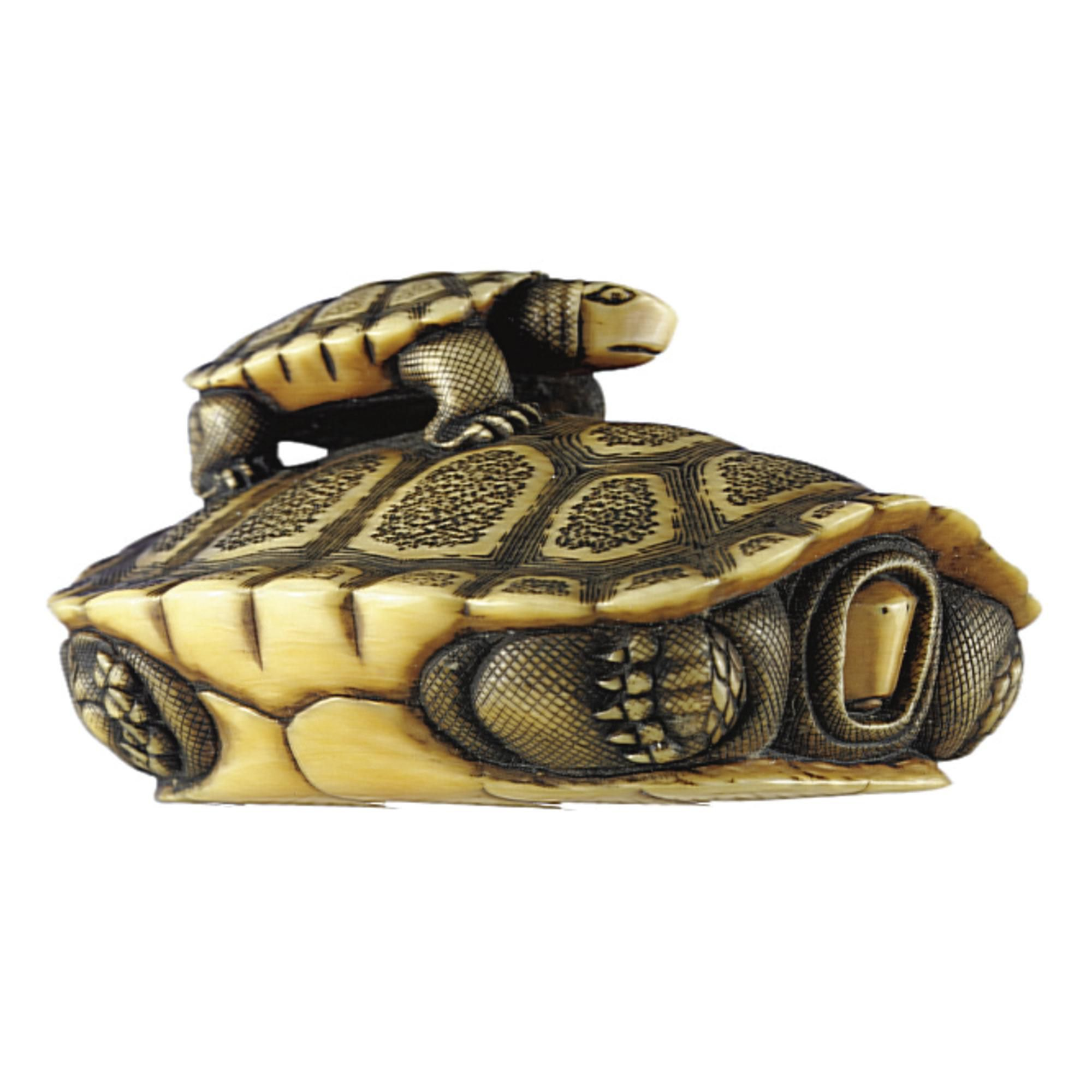An ivory Group of a turtle and young by Ohara Mitsusada, Osaka, 19th century | Lot | Sotheby's