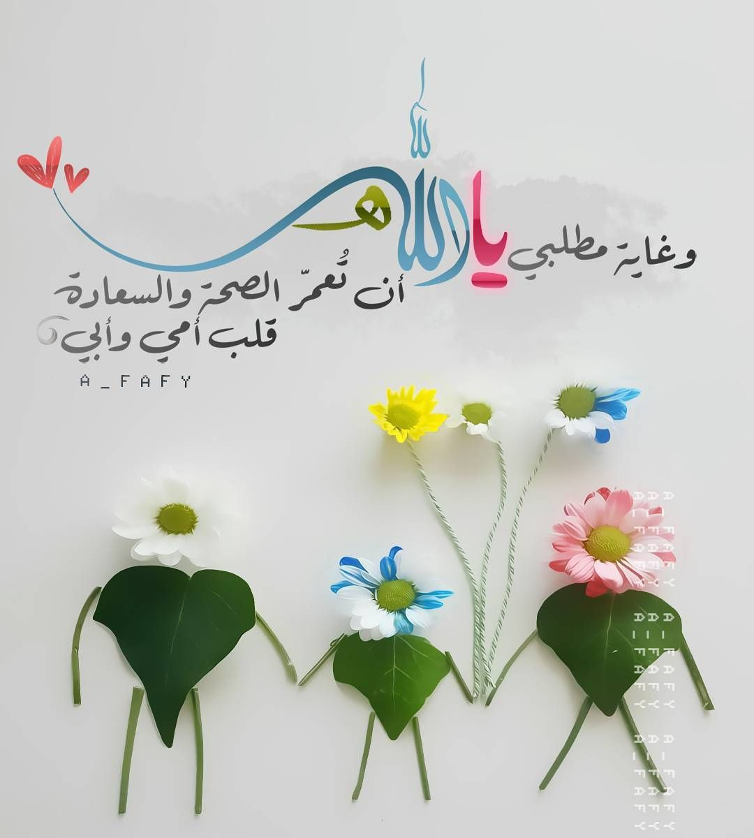 tomato muslim personals 1st place muslim matrimonials is the leading site for marriage minded muslims  worlwide includes photos and chat.