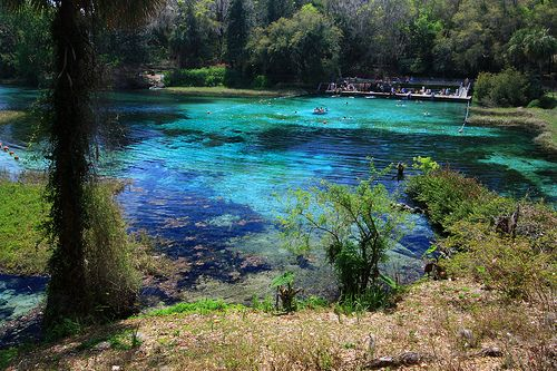 Rainbow River Is A Popular Water Recreation Area A Hot Spot For