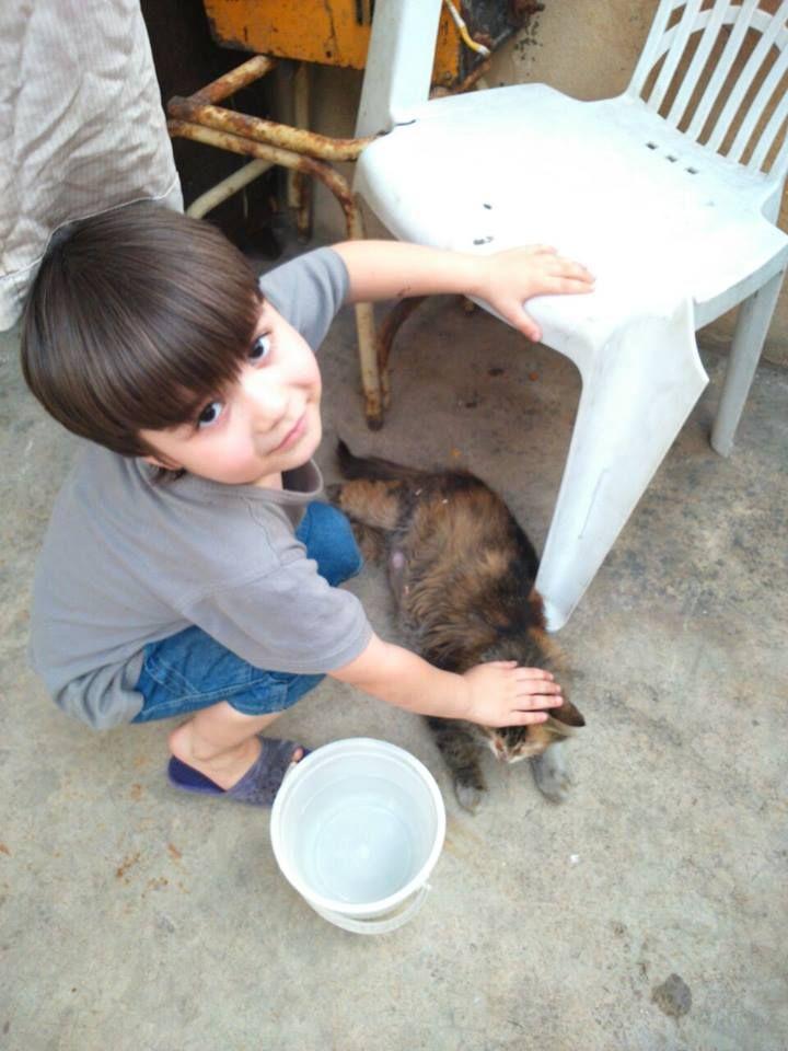 وهي قطتي الحلوة حلب سوريا قطط Cats With My Beautiful Friend Aleppo Syria Cat Kids Dog Bowls Syrian Children