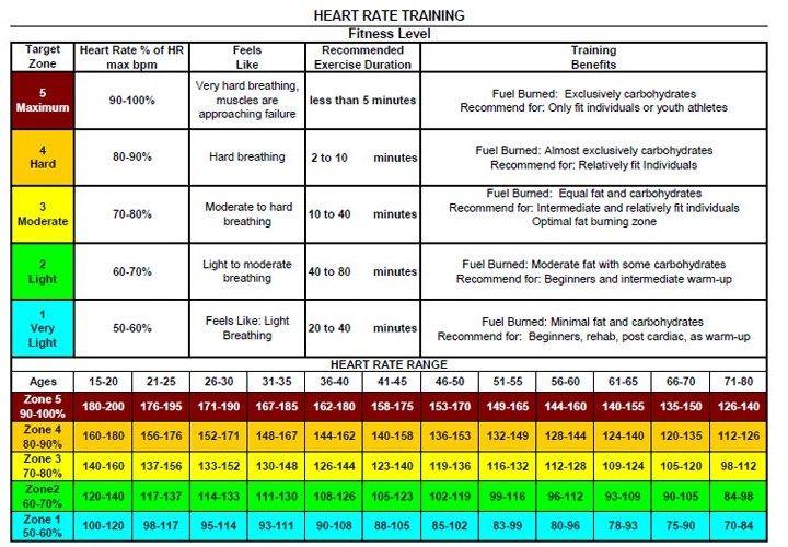 Heart Rate Training Zone Chart Skeletal Pinterest Heart Rate