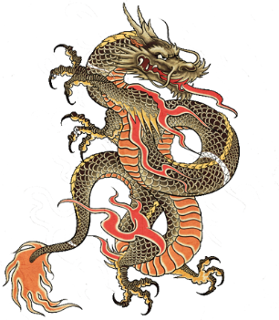 Japanes Dragon Tattoos Designs 79 Png 306 351 Japanese Dragon Tattoos Dragon Tattoo Designs Dragon Tattoo
