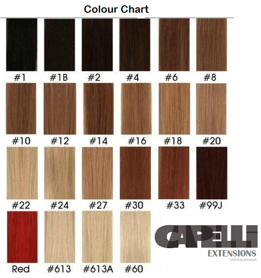 Capelli Extensions International Colour Chart Clip Ins And Tape Extensions Hair Color Chart Human Hair Dread Extensions Hair Color