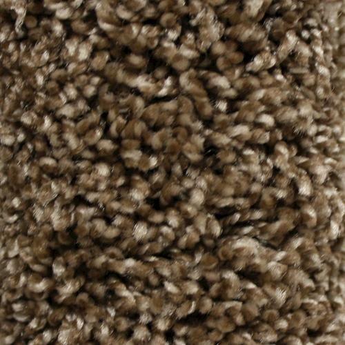 Best Looptex Mills® Everlasting Ii Plush Carpet 12 Ft Wide 400 x 300