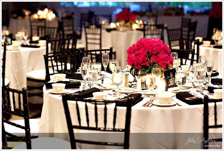 Brookfield Zoo Reception Chicago Wedding Venues Wedding
