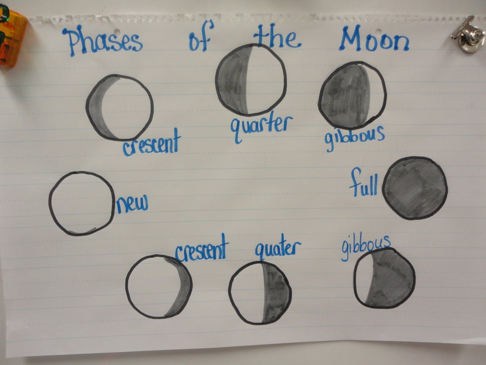 Image Result For Phases Of The Moon For Kids