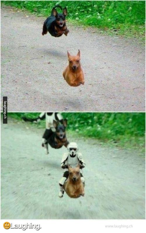 Star Wars improves everything