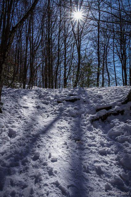 Sol de invierno | SantiMB.Photos
