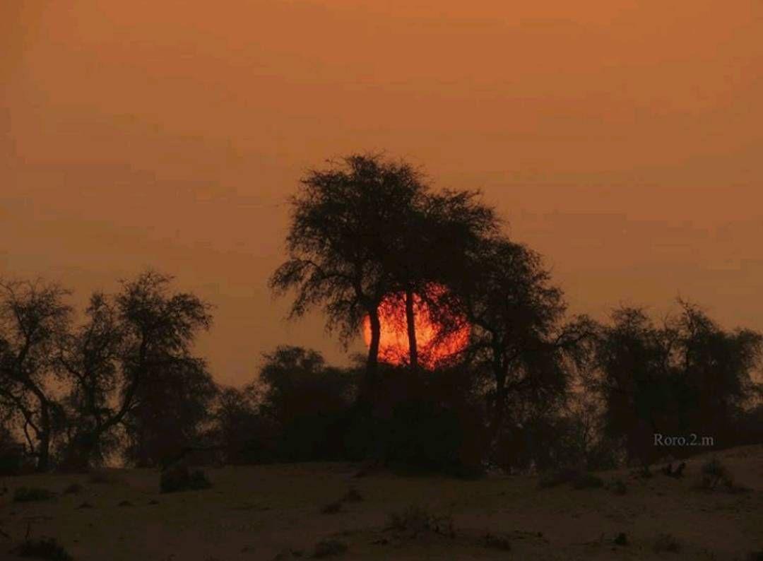 شبكة أجواء الإمارات شروق الشمس صباح اليوم من المطاردة عاشقة المطر G S Chasers Instagram Instagram Posts Photo