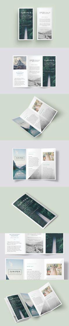 A Beautiful Multipurpose Tri Fold Dl Brochure Template Indesign Indd