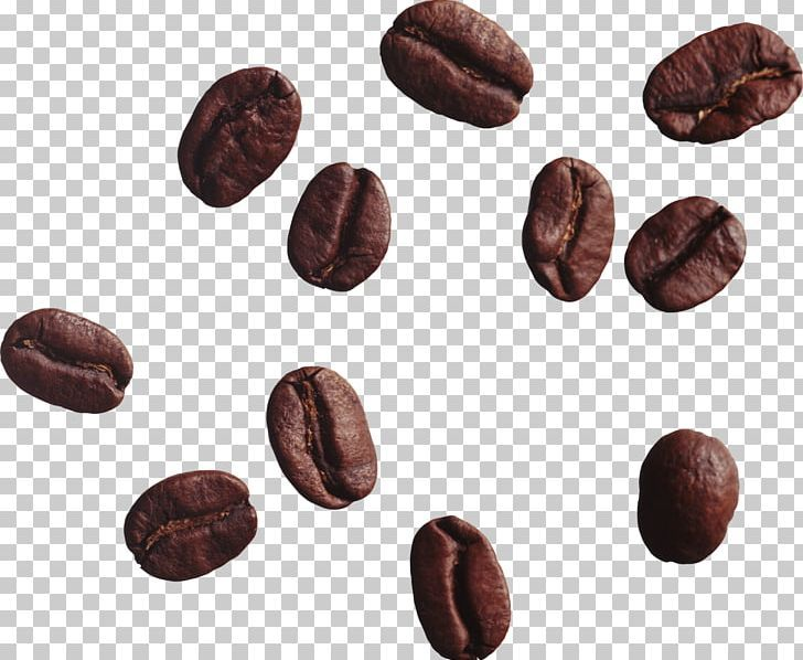 Coffee Bean Tea Cappuccino Png Arabica Coffee Bean Beans Cafe Chocolate Coffee Beans Coffee Bean Tree Types Of Coffee Beans