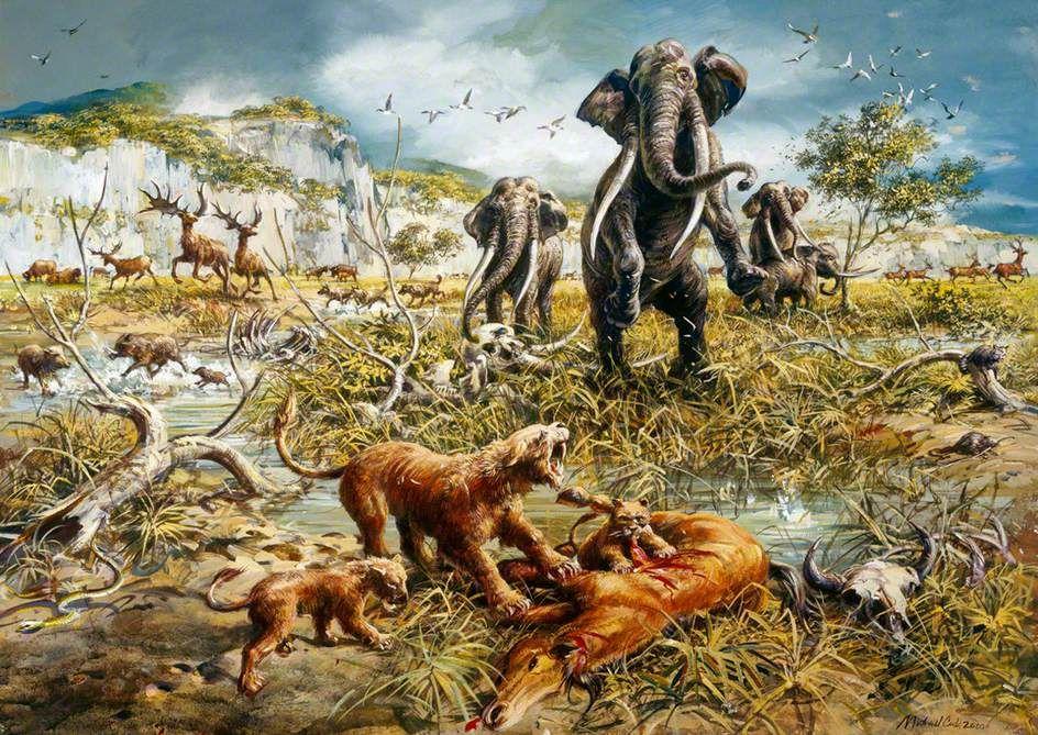 Pleistocene fauna at the Boxgrove Site by Mike Codd