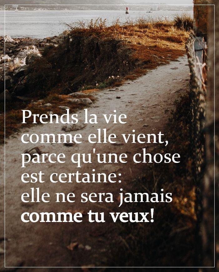 La Vie Comme Elle Vient : comme, vient, Prends, Comme, Vient, Pense, Citations, Bien,, Souhaiter, Bonne, Journée