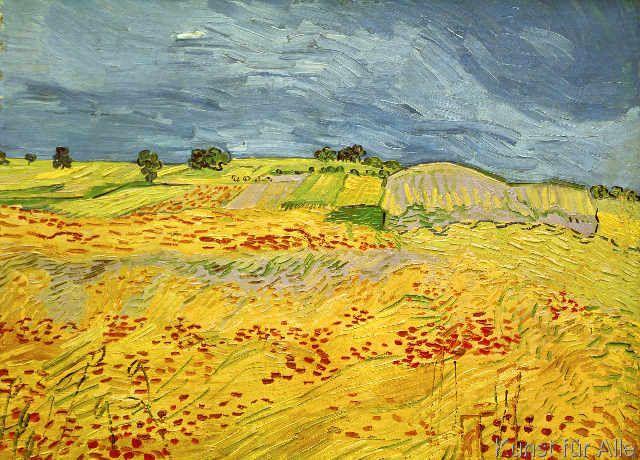 Vincent van Gogh - Felder, mit blühendem Mohn