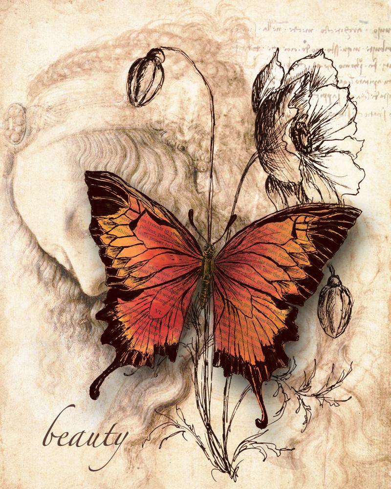 Бабочка открытки