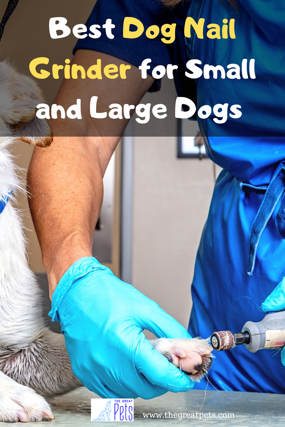 The 5 Best Dog Nail Grinder for Small and Large Dogs in