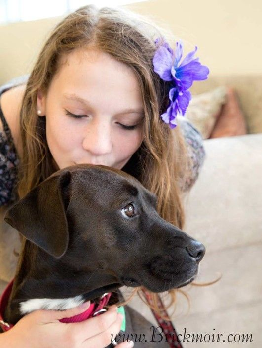 Paisley goes to her furever home Paw, Animals, Volunteer