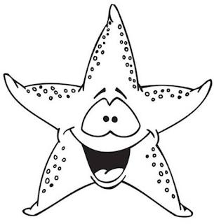Animales Invertebrados Equinodermos Para Dibujar Buscar Con Google Mar Para Colorear Estrella De Mar Dibujos