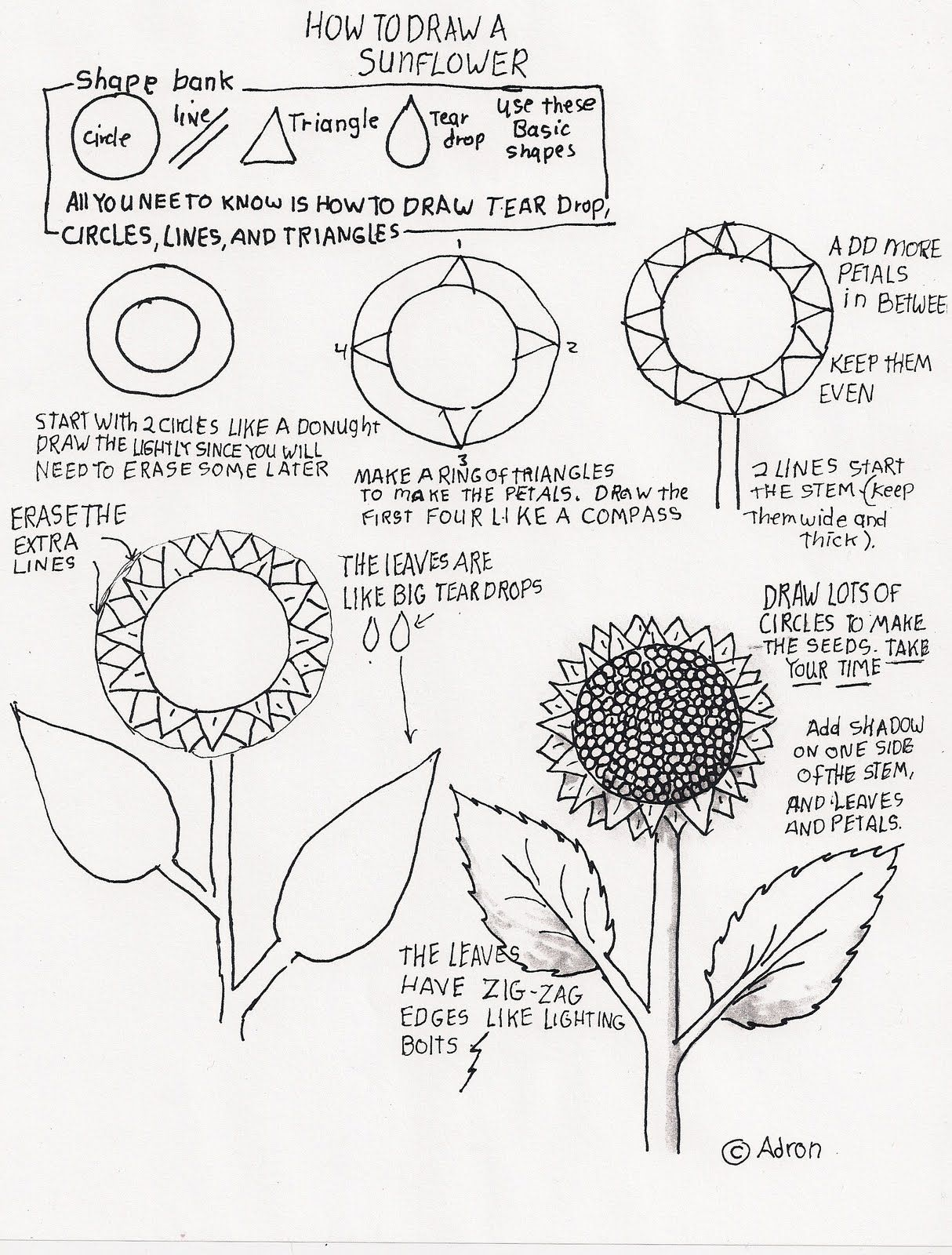 How to Draw Worksheets for Young Artist: How to Draw A Sunflower ...