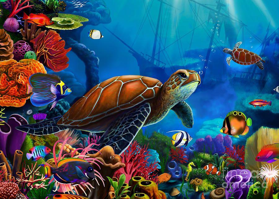 Turtle Domain Digital Art Images Turtle Sea Art