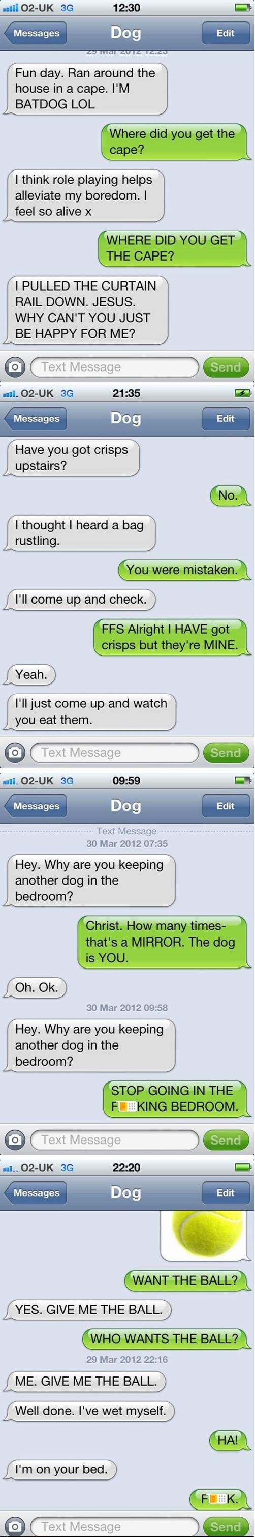 Just Texting My Dog If Dogs Could Text Dog Texts Make Me Laugh