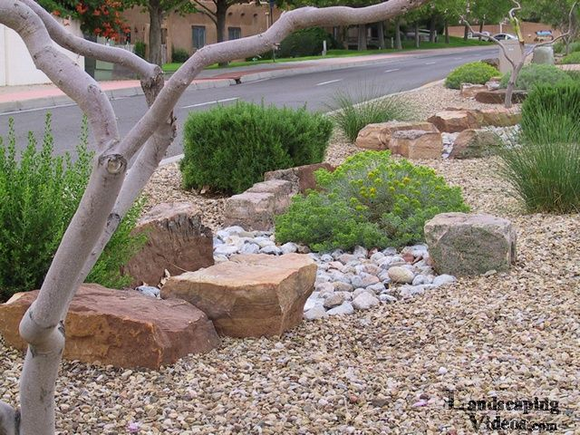 Xeriscape Ideas For New Mexico Xeriscaping Low Water Use